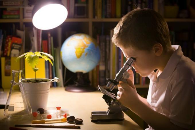 'Curiosa ciencia' en Casa de la Ciencia Sevilla (Sevilla)