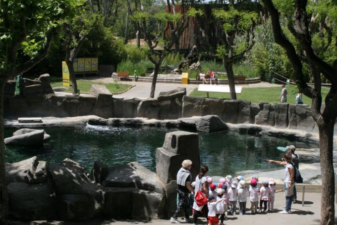 'Sábados de aventura' en Parque Zoológico de Barcelona (Barcelona)