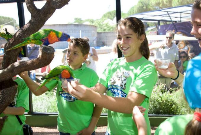 'Campamento de Semana Santa entre animales' en Zoo Aquarium de Madrid (Madrid)