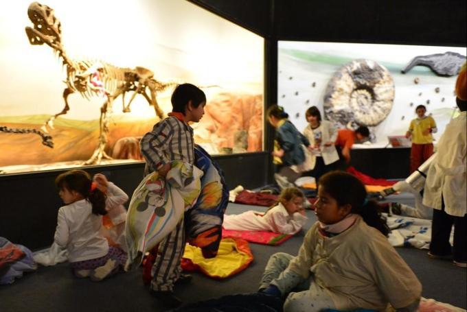 Al museo en pijama. Museo de Ciencias Naturales en Museo de Ciencias Naturales (Valencia)