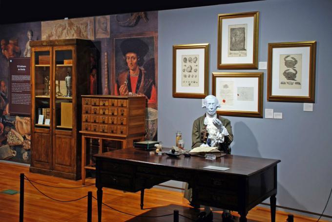 Visita teatralizada 'Una colección, un criollo y un rey' en Museo Nacional de Ciencias Naturales (Madrid)
