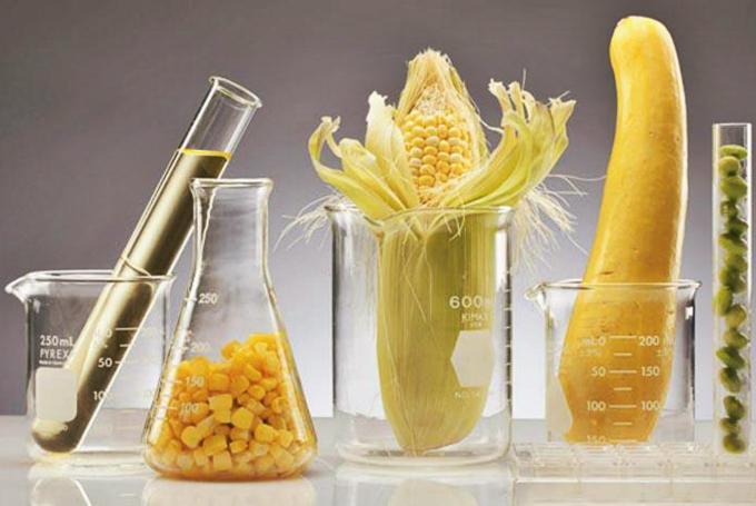 'Ciencia y cocina para una vida sana y divertida' en Museo Nacional de Ciencias Naturales (Madrid)